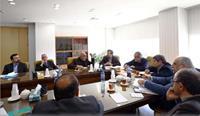 همراهی مجلس برای بهبود تولید و تجارت فرش