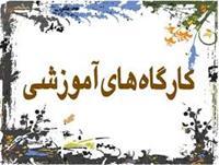 کارگاه آموزشی و گردهمایی روسای ادارات فرش در شیراز