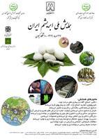 اولین همایش ملی ابریشم ایران برگزار می شود