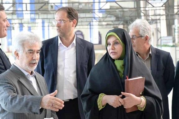 بازدید رئیس مرکز ملی فرش ایران از چند کارگاه قالی بافی استان زنجان