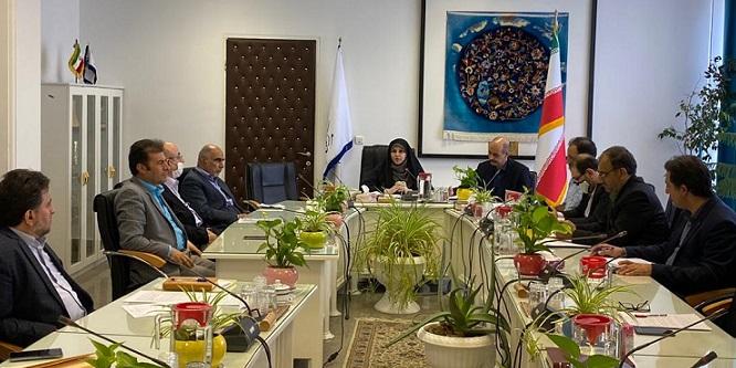 سلسله نشست های ستاد عالی راهبری فرش دستباف کشور تشکیل جلسه داد