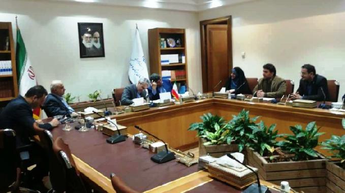 رئیس مرکز ملی فرش ایران برای پیگیری تامین بودجه قالیبافان با نوبخت دیدار کرد