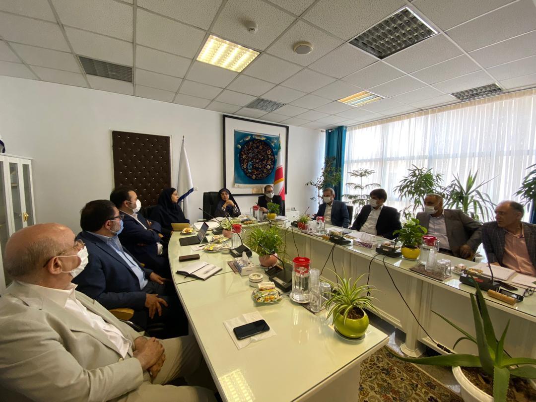 برای توسعه صادرات/ ستاد عالی راهبری فرش دستباف تشکیل شد