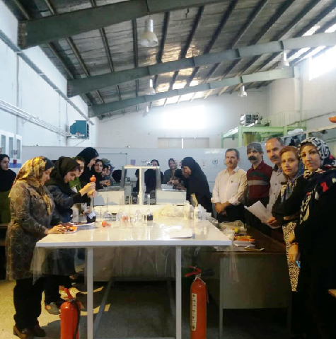 برگزاری دوره آموزش تخصصی رنگرزی فرش دستباف در استان کرمانشاه