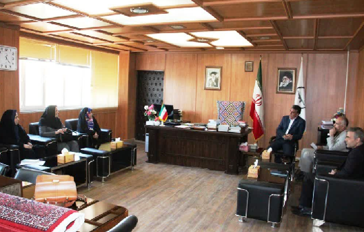 کارگروه فرش دستباف در جنوب استان آذربایجان غربی تشکیل شد