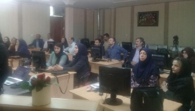 برگزاری دوره های اموزشی  فرش دستباف در استان زنجان