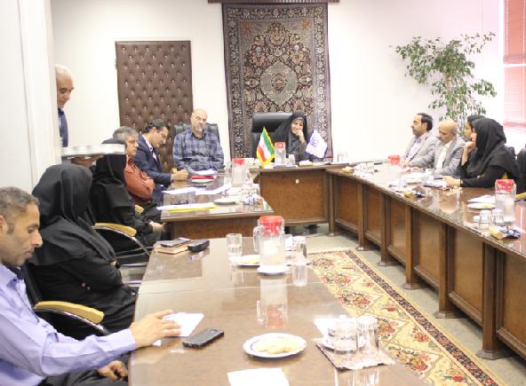 کمیته امور نمایشگاه بین المللی فرش دستباف تبریز در مرکز ملی فرش دستباف تشکیل جلسه داد.